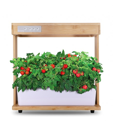 Indoor Hydroponics Garden With Bamboo Frame